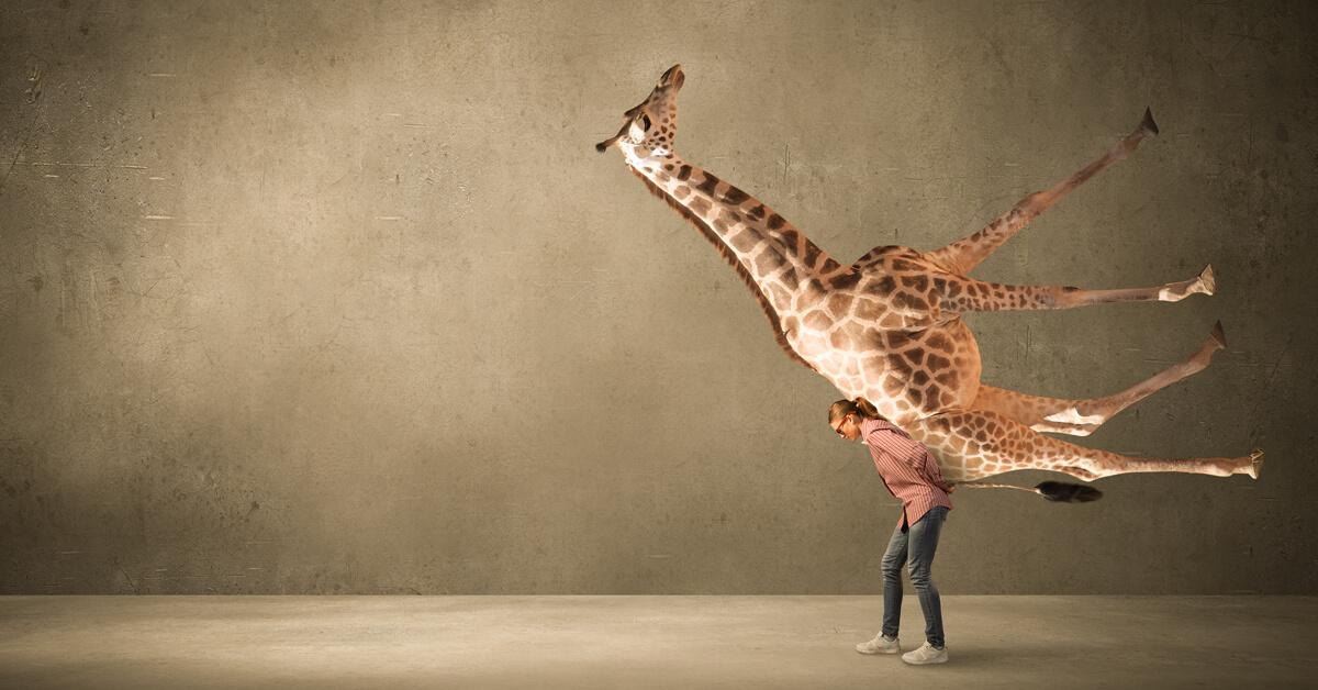 Raus aus den Kommunikationsfallen – mit der Giraffensprache