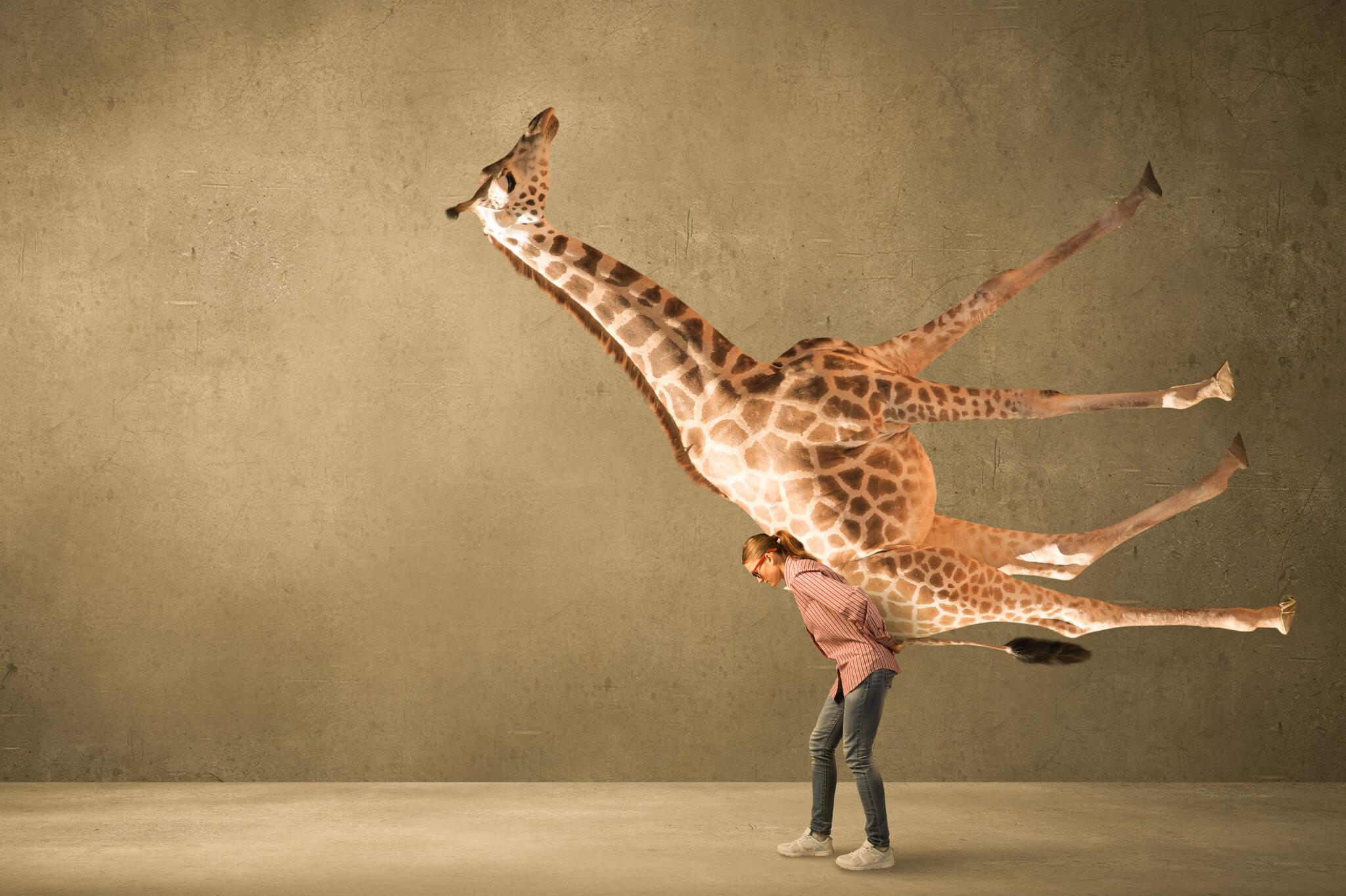 Giraffensprache-kommunikationsfallen
